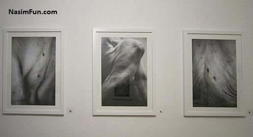 عکس های برهنه نمایشگاه عکاسی دنا در تهران