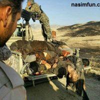 فیلم حضور تیز پروازان هوانیروز ارتش در عملیات انهدام گروه تروریستی در کنار سپاه  در کرمانشاه