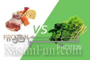 پروتئین گیاهی بهتر است یا پروتئین حیوانی؟