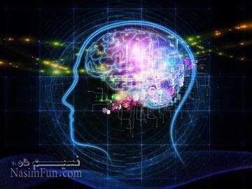 آیا این 10 واقعیت را درباره مغز انسان می دانستید؟