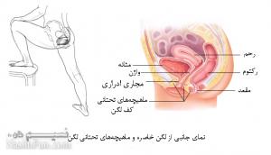روش های موثر درمان زود انزالی