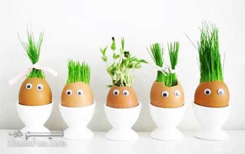 آموزش سبز کردن سبزه عید