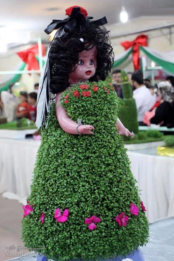 کاشت سبزه کنجد طرز تهیه انواع سبزه عید نوروز گندم، خاکشیر، کتان، ماش ...