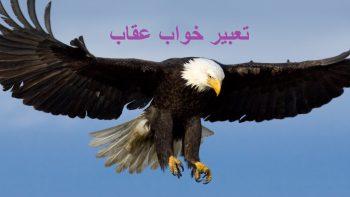 تعبیر خواب عقاب - تعبیر دیدن عقاب در حال پرواز چیست؟