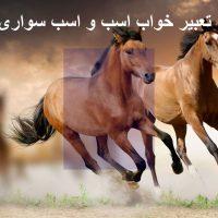 تعبیر خواب اسب – اسب سواری در خواب چه تعبیری دارد؟
