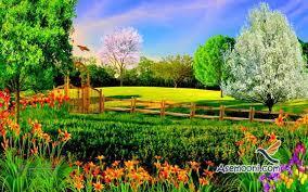 عکس طبیعت زیبای تابستانی