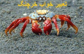 تعبیر خواب خرچنگ - دیدن خرچنگ مرده در خواب چه تعبیری دارد؟