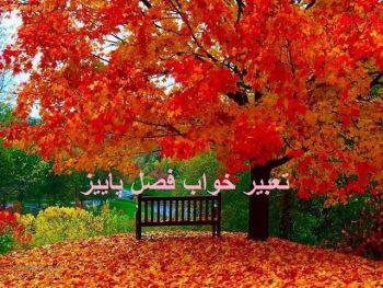 تعبیر خواب پاییز - دیدن برگ های زرد پاییزی در خواب چه تعبیری دارد؟