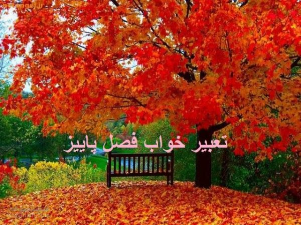 تعبیر خواب پاییز – دیدن برگ های زرد پاییزی در خواب چه تعبیری دارد؟
