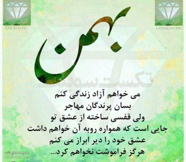 عکس نوشته دخترونه متولدین بهمن