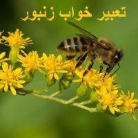 تعبیر خواب زنبور – نیش زدن زنبور در خواب چه تعبیری دارد؟