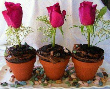طرز تهیه دسر گلدانی خوشمزه + فیلم آموزشی