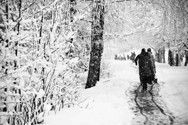عکس پروفایل خاص زمستانی