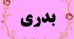 معنی اسم بدری – معنی بدری + معنی اسمهای جدید دخترانه