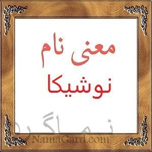 معنی اسم نوشیکا | انواع نام های ایرانی و مازنی + نام نوشیکا