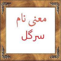 معنی اسم سرگل – معنی سرگل + معنی نام های دخترانه ایرانی