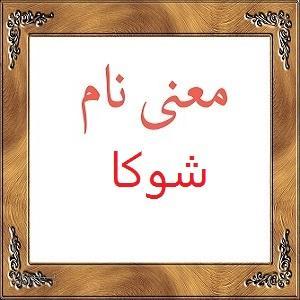 معنی اسم شوکا | معنی شوکا + معنی نام های دخترانه ایرانی