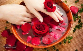 خواص گلاب برای پوست