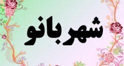 معنی اسم شهربانو – معنی شهربانو  – معنی نام های دخترانه ایرانی