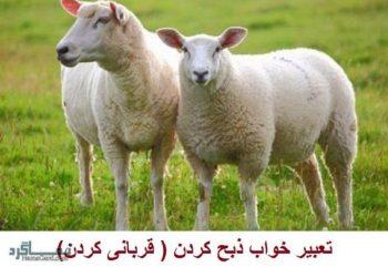تعبیر خواب ذبح کردن + تعبیر خواب کشتن یا قربانی کردن گاو، گوسفند، بره