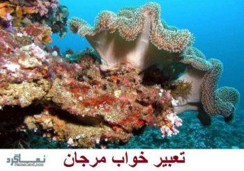 تعبیر خواب مرجان - معنی دیدن مرجان در خواب چیست؟