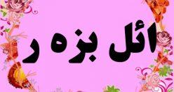 معنی اسم ائل بزه ر- نام ائل بزر – زیباترین نام های دخترانه ترکی