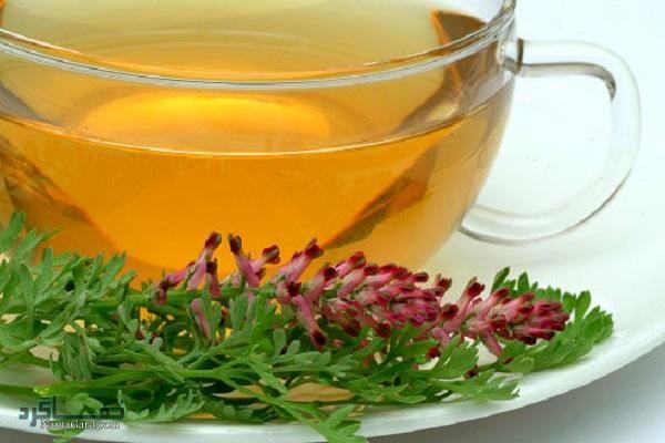 معرفی کامل خواص درمانی گیاه شاه تره + تهیه ی شربت و چای شاه تره