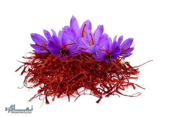 آشنایی با 40 خواص درمانی شگفت انگیز گیاه زعفران + مضرات مصرف آن