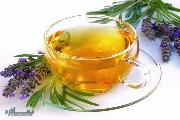 گیاه فرندل | خواص درمانی فرندل برای سلامتی | عوارض آن