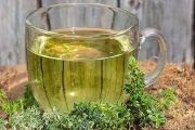 گیاه کاکوتی | آشنایی با خواص درمانی کاکوتی | طریقه مصرف | عوارض مصرف