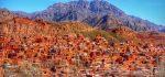 روستای ابیانه | علت عجیب سرخ بودن خاک ابیانه + آثار تاریخی ابیانه