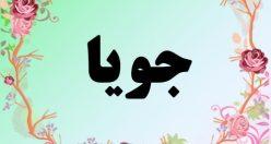 معنی نام جویا   معنی جویا + معنی نام های پسرانه ایرانی