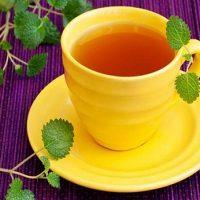 آشنایی با گیاه فاخره   فواید و خواص درمانی فاخره برای روماتیسم
