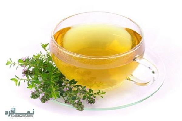 گیاه آناغالیس | مهم ترین خواص درمانی آناغالیس برای سلامتی بدن | عوارض آن