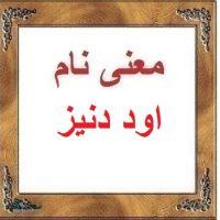 معنی اسم اود دنیز – معنی نام اود دنیز – زیباترین نام های دخترانه ترکی