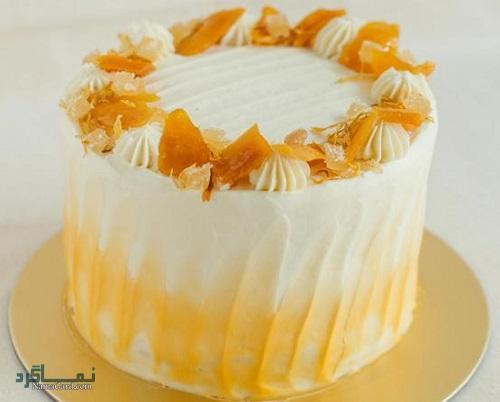 فیلم آموزشی دستور تهیه کیک انبه