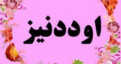 معنی اسم اود دنیز – نام اود دنیز – زیباترین نام های دخترانه ترکی