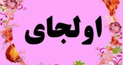معنی نام اولجای – معنی اسم اولجای – اسم های دخترانه ترکی