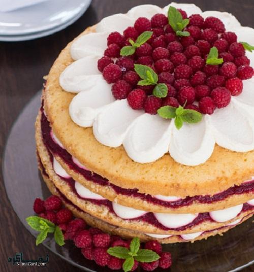 کیک تمشک خوشمزه + تزیین