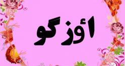 معنی نام اٶزگو – اسم اٶزگو – اسم های دخترانه ترکی زیبا