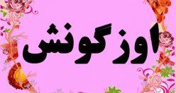 معنی اسم اوزگونش – نام اوزگونش – اسم های دخترانه ترکی