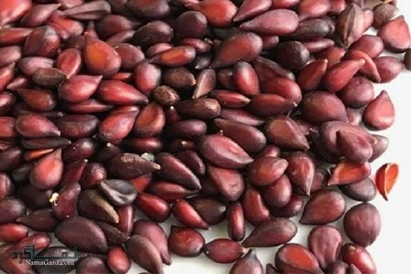 مهم ترین خواص درمانی به دانه برای درمان گلو درد، سرفه + روش های مصرف آن