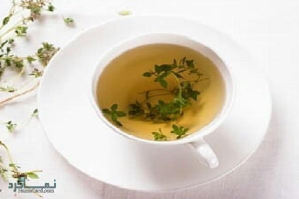 خواص درمانی گیاه پلم برای رماتیسم | مضرات آن