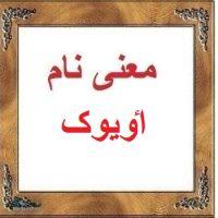 معنی اسم اٶیوک – نام اٶیوک – زیباترین نام های ترکی دخترانه