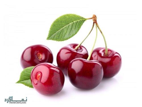 خواص و فواید درمانی میوه آلبالو