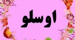 معنی اسم اوسلو – معنی نام اوسلو – اسم های دخترانه ترکی زیبا