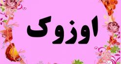 معنی اسم اوزوک – نام اوزوک – زیباترین نام های دخترانه ترکی