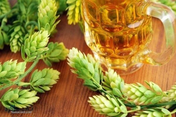 آشنایی با خواص و فواید درمانی گیاه رازک و مضرات آن