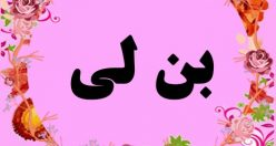 معنی اسم بن لی – نام بن لی – زیباترین اسم های دخترانه ترکی