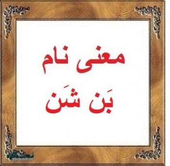معنی نام بَن شَن - بن شن - اسم های ترکی دخترانه بامعنی
